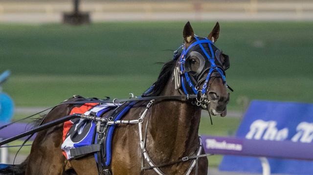 Home Australian Harness Racing